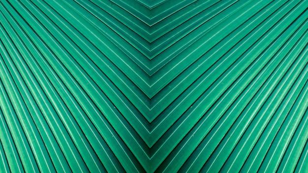 Listras verdes da cerceta abstrata da natureza, fundo em folha de palmeira tropical. Foto Premium