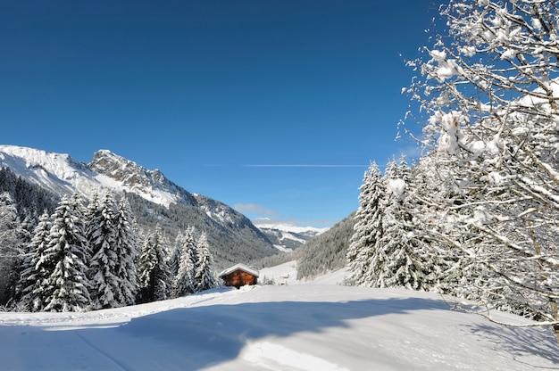 Littel cottage na montanha Foto Premium