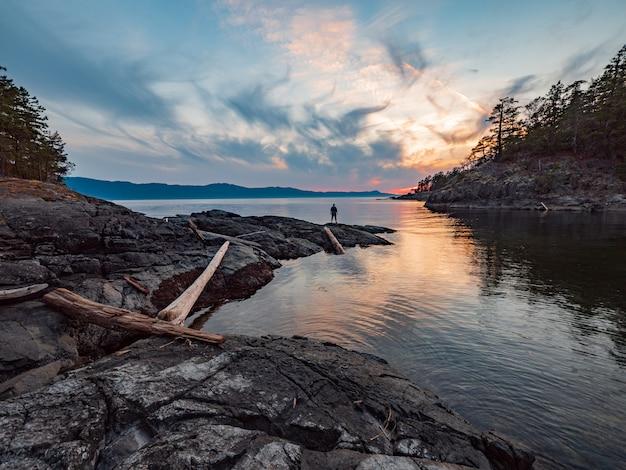 Log de árvore marrom no lago sob o céu azul e nuvens brancas Foto gratuita