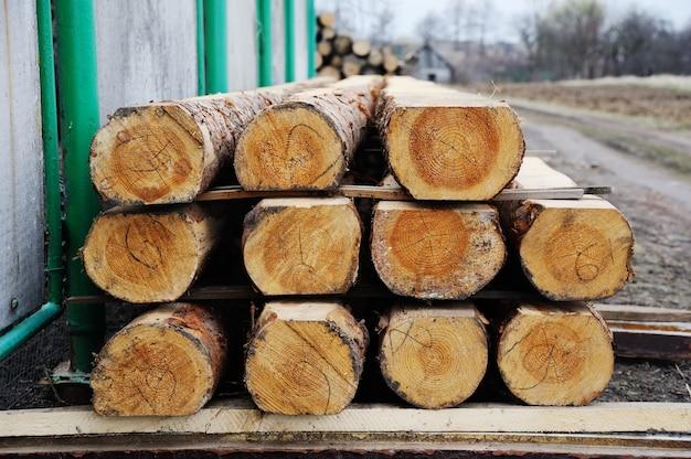 Logs serrados empilhados em linhas Foto Premium