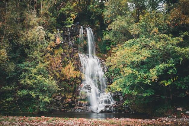 Longa exposição de uma cachoeira em uma floresta colorida Foto gratuita