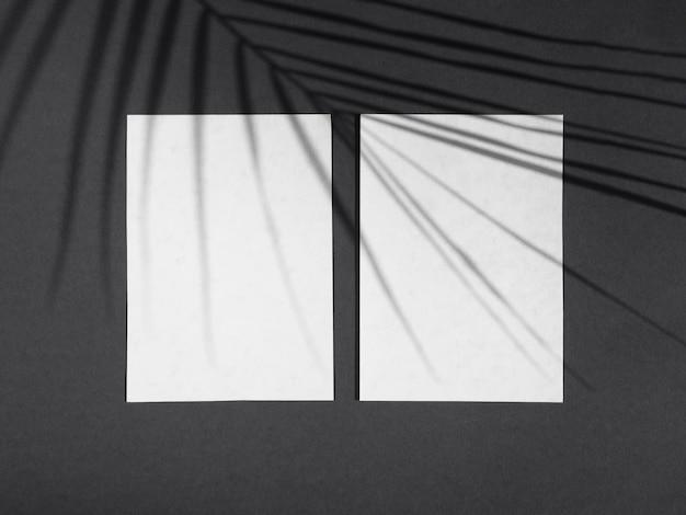 Luz de fundo preto com espaços em branco brancos de papel e uma sombra de folha de ficus Foto gratuita