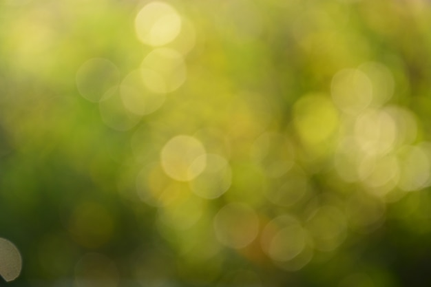 Luz verde turva bokeh abstrato Foto Premium