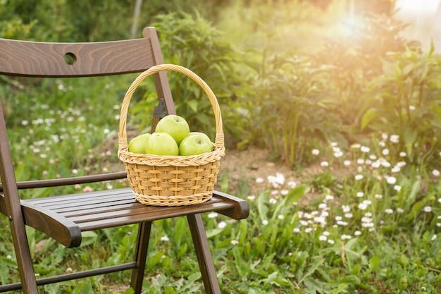 Maçã verde, em, cesta vime, ligado, cadeira jardim, grama verde, tempo colheita, sol, flare Foto Premium