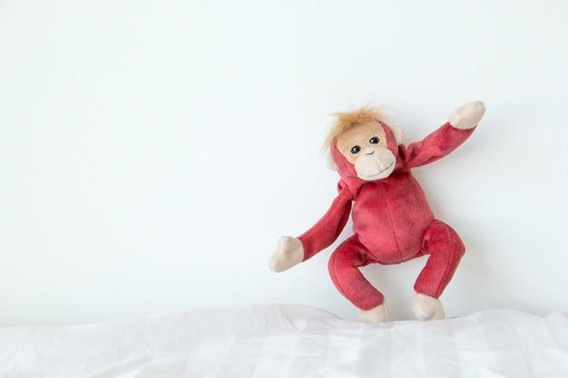 Macaco feliz no fundo branco. Foto Premium