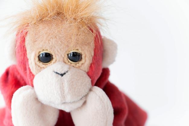 Macaquinho vermelho sorrindo feliz Foto Premium