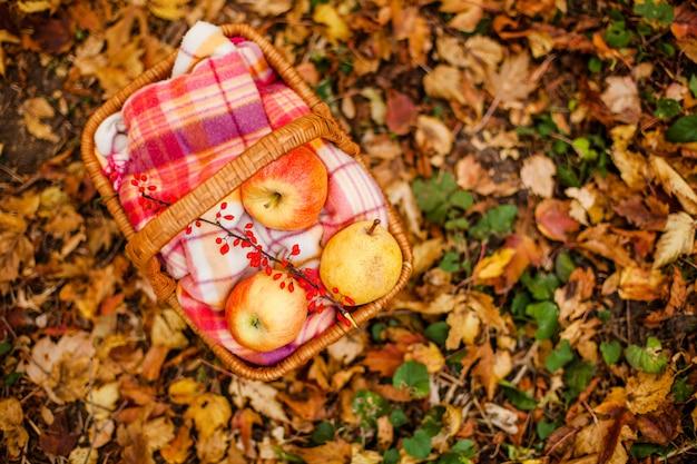 Maçãs e ervilha vermelhas e amarelas na cesta Foto Premium