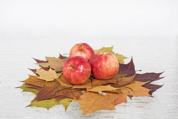 Maçãs vermelhas em folhas de outono. Foto Premium