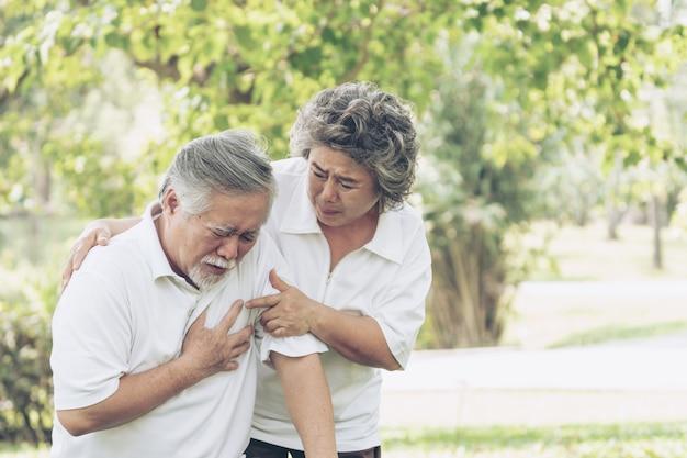Macho asian sênior, sofrimento, de, mau, dor, em, seu, peito, ataque cardíaco, em, parque, esposa, marido apoiando Foto Premium