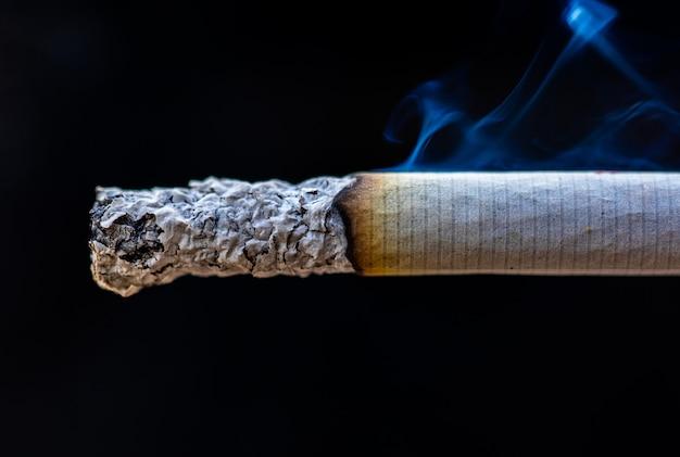Macro de detalhe de cigarro fumaça no charuto Foto Premium