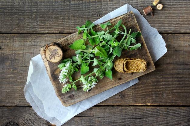 Madeira verde menta Foto Premium
