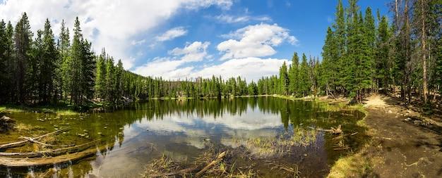 Madeiras perenes ao redor do panorama do lago estes park Foto Premium