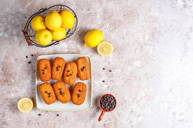 Madeleine - pequenos biscoitos franceses tradicionais caseiros com limão e pedaços de chocolate. Foto gratuita