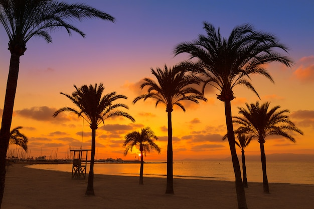 Majorca el arenal praia sarenal pôr do sol perto de palma Foto Premium