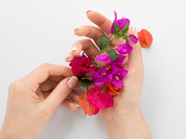 Manicured mãos segurando flores coloridas Foto gratuita