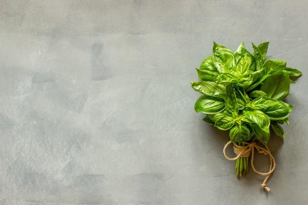 Manjericão em concreto cinzento Foto Premium