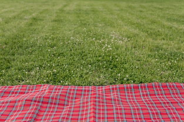 Manta de piquenique na grama do parque Foto gratuita
