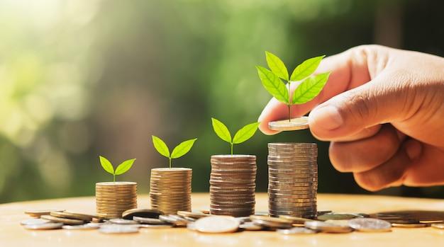 Mão colocando moedas na pilha com planta que cresce em dinheiro. conceito de finanças e contabilidade Foto Premium
