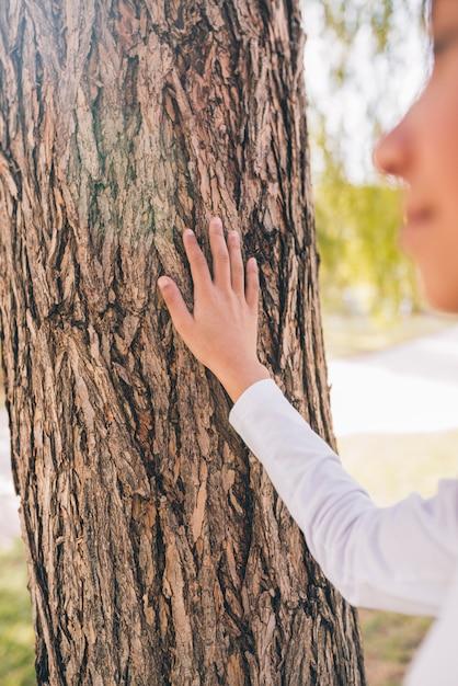 Mão da garota tocando a casca da árvore com a mão Foto gratuita