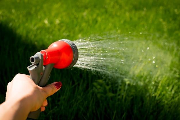Mão de água jardim selo mangueira cuidados verde. a mulher entrega as plantas molhando da mangueira, faz uma chuva no jardim. jardineiro com mangueira molhando e água do pulverizador nas flores. foco seletivo. Foto Premium