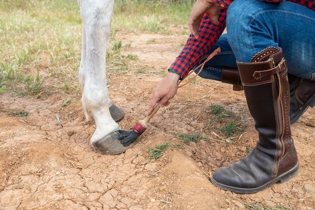 Mão de homem anônimo usando pincel para manchar a cera no casco do cavalo branco no rancho Foto Premium