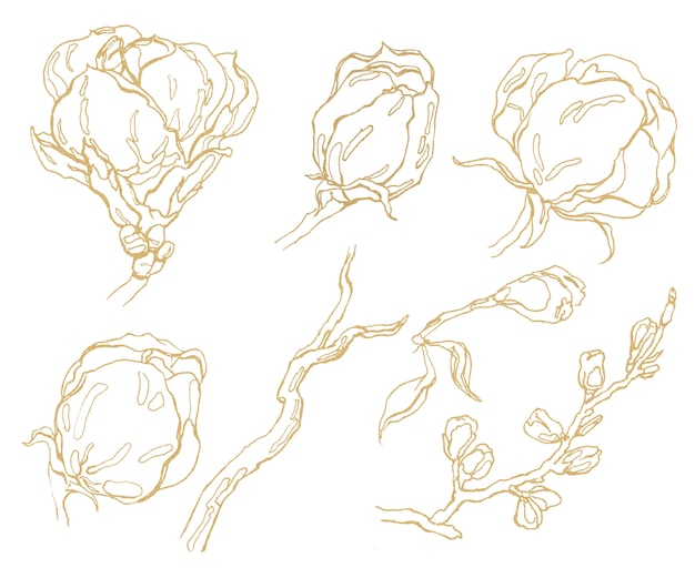 Mão desenhada flores gráficas douradas. Foto Premium