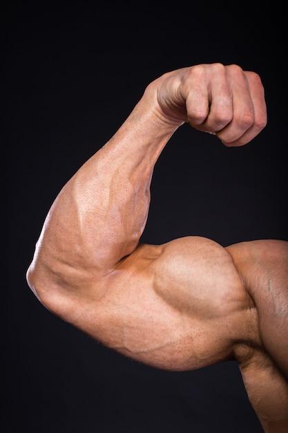 Mão do close-up do halterofilista muscular do homem. Foto Premium