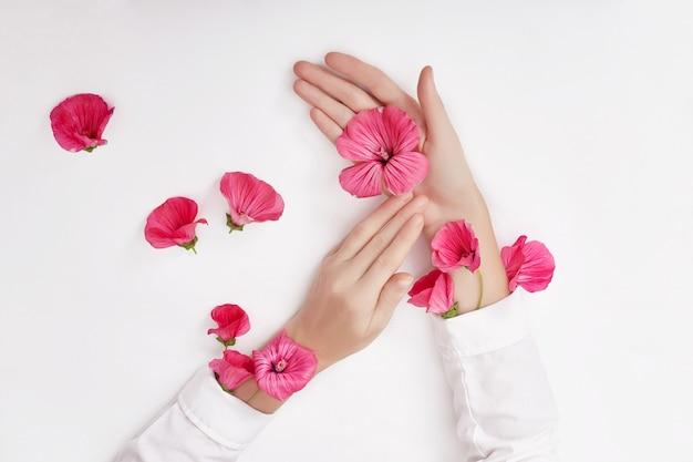 Mão e flor rosa na mesa Foto Premium