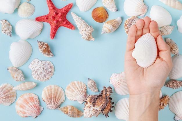 Mão feminina segurar uma concha sobre um fundo azul de verão com diferentes conchas e estrelas do mar Foto Premium