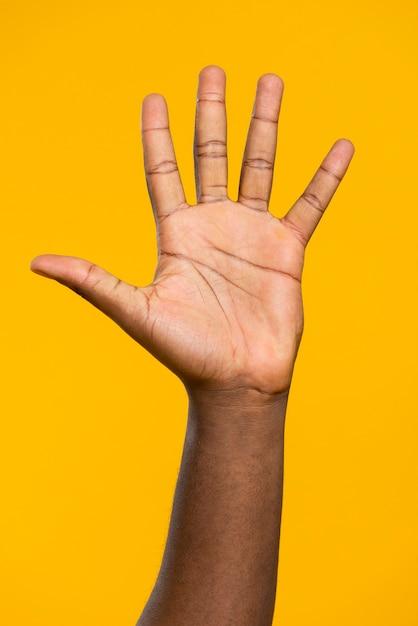 Mão frontal vista aberta Foto gratuita