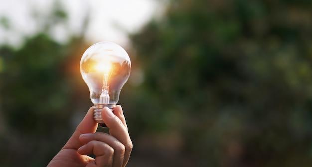 Mão segurando a lâmpada no fundo da natureza. conceito de energia solar Foto Premium