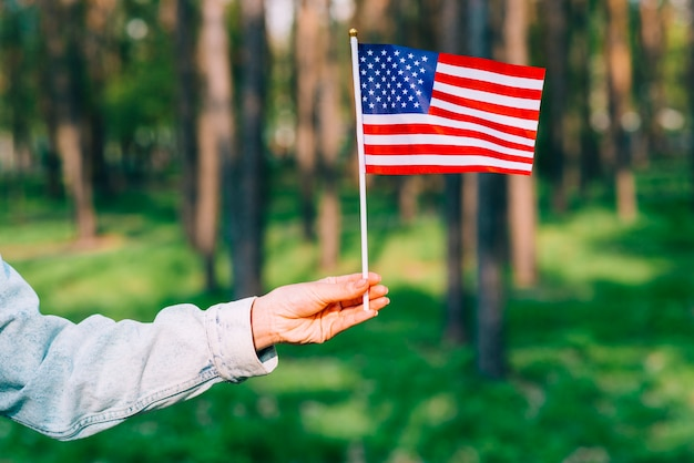 Mão, segurando, bandeira eua Foto gratuita