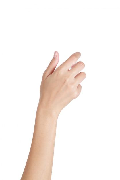 Mão vazia da mulher que guarda com lado traseiro da mão isolado no branco Foto Premium