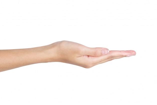 Mão vazia de mulher segurando com espaço aberto isolado no branco Foto Premium