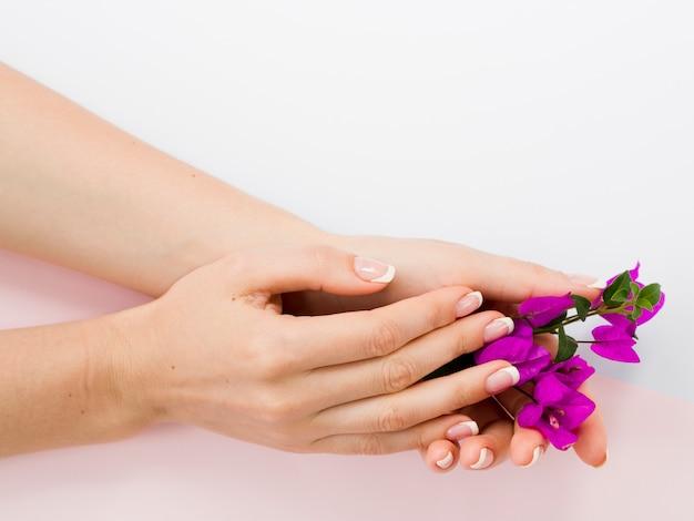 Mãos de mulher bem cuidada segurando flores coloridas Foto gratuita
