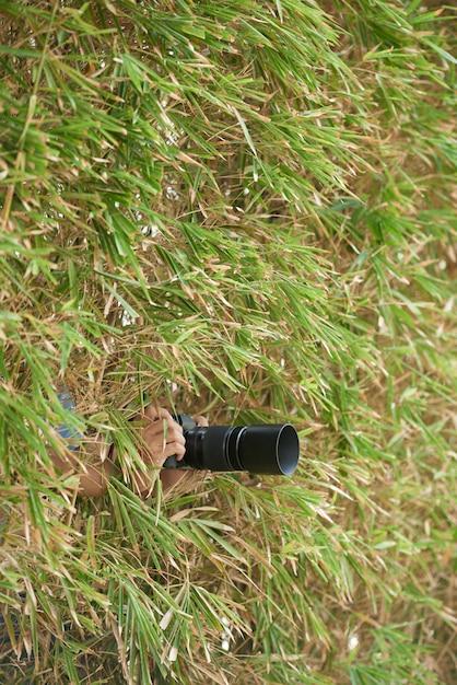 Mãos do fotógrafo irreconhecível, se escondendo na vegetação densa e segurando a câmera Foto gratuita