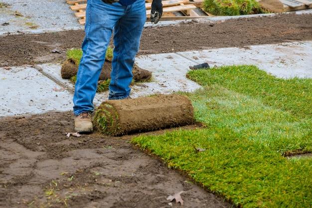 Mãos na jardinagem, colocando a grama verde, instalando no gramado. Foto Premium