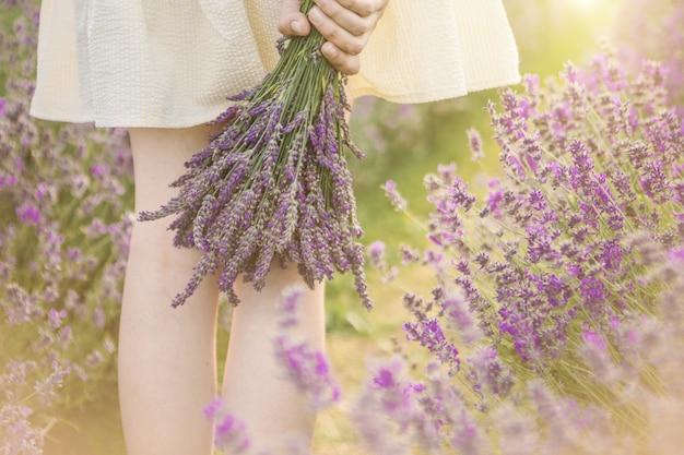 Mãos segurando um buquê de flores de lavanda Foto Premium