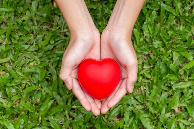 Mãos segurando um coração vermelho na grama Foto Premium