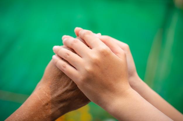 Mãos superiores e asiáticas novas asiáticas que guardam. Foto Premium