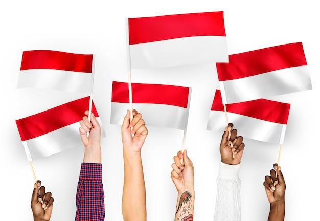 Mãos, waving, bandeiras, de, indonésia Foto gratuita