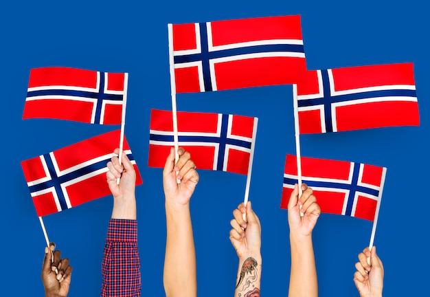 Mãos, waving, bandeiras, de, noruega Foto gratuita