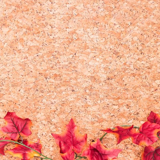 Maple folhas na mesa de madeira Foto gratuita