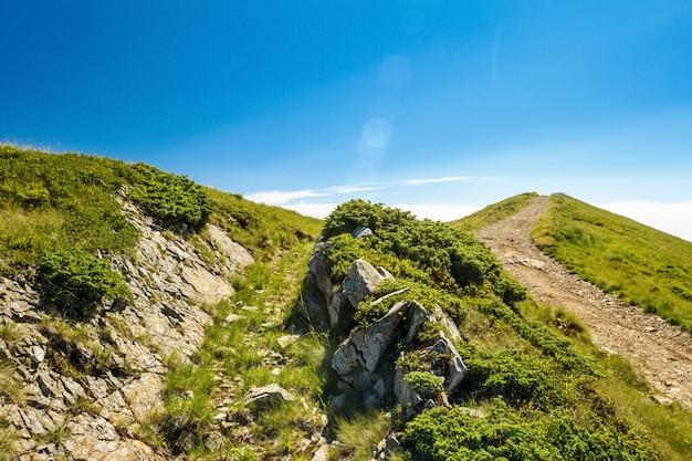 Maravilhosa paisagem das montanhas dos cárpatos ucranianos. Foto gratuita