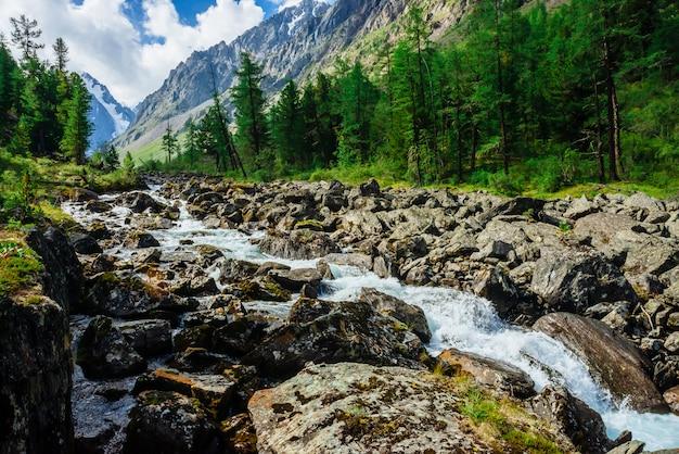 Maravilhoso fluxo de água rápida da geleira no riacho de montanha selvagem com grandes pedras molhadas. incrível paisagem cênica com floresta e montanhas nevadas. cenário atmosférico das terras altas. Foto Premium