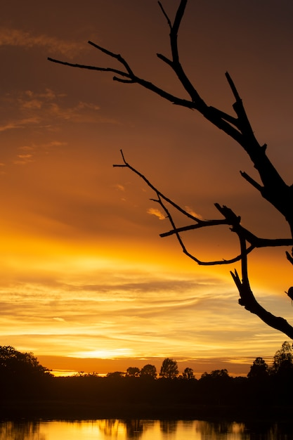 Maravilhoso pôr do sol ou nascer do sol. Foto Premium