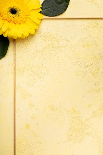 Margarida amarela bonito do close-up e quadro pequeno das flores violetas Foto gratuita