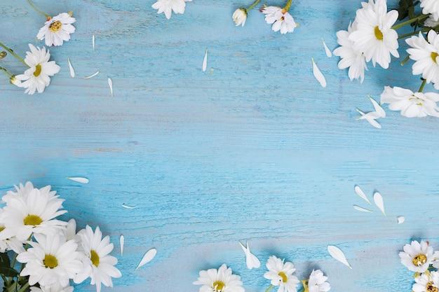 Margaridas em superfície de madeira decaída Foto gratuita