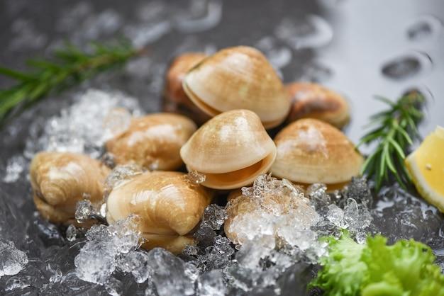 Marisco no gelo congelado Foto Premium