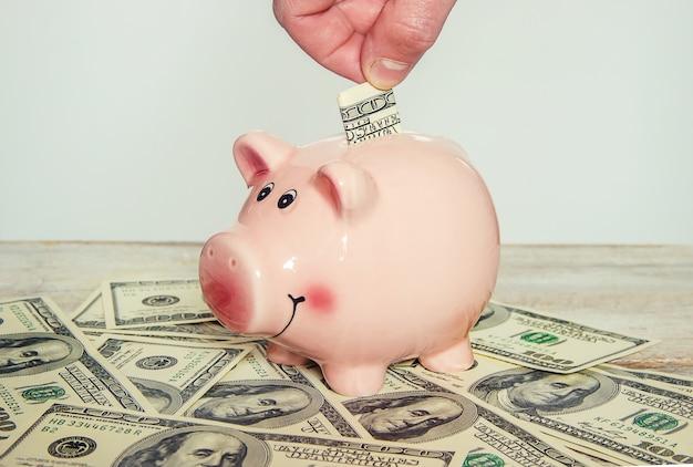 Mealheiro e dólares. foco seletivo. Foto Premium